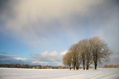 Het landschap van de winter met donkere wolken die over hemel komen Royalty-vrije Stock Foto's