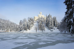 Het landschap van de winter met een kasteel stock fotografie