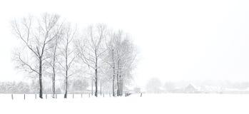 Het landschap van de winter met huizen Stock Fotografie