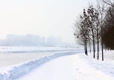 Het landschap van de winter met rivier Royalty-vrije Stock Afbeelding