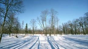 Het landschap van de winter met schaduwen Stock Fotografie