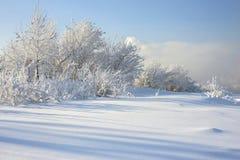 Het landschap van de winter met sneeuw Royalty-vrije Stock Fotografie