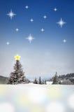 Het landschap van de winter met sterhemel Stock Foto