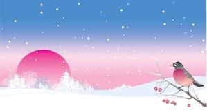 Het landschap van de winter met vogel Stock Foto's