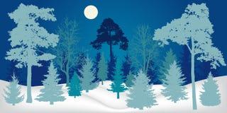 Het landschap van de winter Nachtbos, silhouet royalty-vrije illustratie