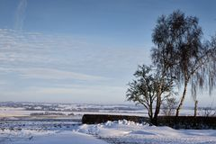 Het landschap van de winter op een zonnige dag stock afbeeldingen