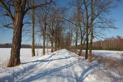 Het landschap van de winter in Polen Stock Afbeeldingen