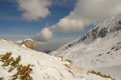 Het landschap van de winter in Retezat berg, Roemenië Stock Foto