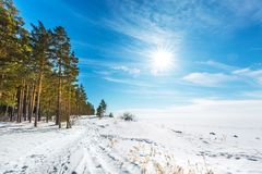 Het landschap van de winter Siberië, de kust van de Ob-rivier Stock Foto
