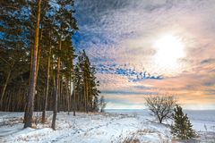 Het landschap van de winter Siberië, de kust van de Ob-rivier Royalty-vrije Stock Fotografie