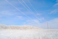 Het landschap van de winter, sneeuw in steppen en een hout. Stock Afbeelding
