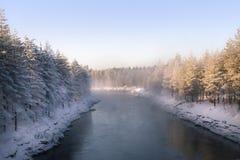 Het landschap van de winter Sneeuwgebied en bevroren bomen royalty-vrije stock foto