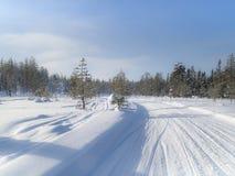 Het landschap van de winter Sneeuwgebied en bevroren bomen royalty-vrije stock fotografie