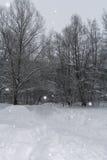 Het landschap van de winter Snow-covered sleep, naakte bomen en sneeuwval Stock Fotografie