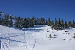 Het landschap van de winter van de Karpaten stock afbeelding