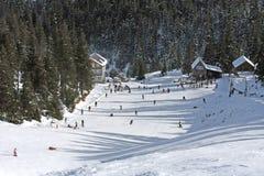 Het landschap van de winter van de Karpaten Stock Fotografie