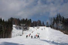 Het landschap van de winter van de Karpaten stock afbeeldingen