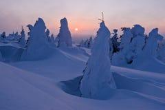 Het landschap van de winter van sneeuwspoken - madaras Harghita Royalty-vrije Stock Foto's
