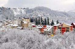 Het landschap van de winter van Sotchi Stock Foto