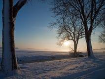 Het landschap van de winter in weiland Royalty-vrije Stock Afbeelding