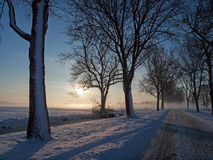 Het landschap van de winter in weiland Stock Afbeeldingen