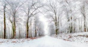 Het landschap van de winter De winterweg en bomen met sneeuw wordt behandeld die Royalty-vrije Stock Afbeelding