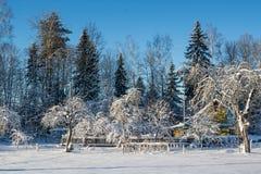 Het landschap van de winter Zonnige dag De winterdaling De heldere kleuren Eenvoudig landschap De winter bos bosweg de winter fil Royalty-vrije Stock Afbeelding