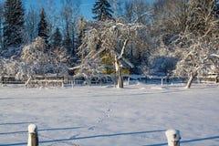 Het landschap van de winter Zonnige dag De winterdaling De heldere kleuren Eenvoudig landschap De winter bos bosweg de winter fil Stock Afbeelding