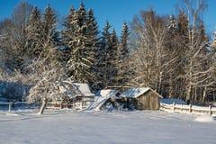 Het landschap van de winter Zonnige dag De winterdaling De heldere kleuren Eenvoudig landschap De winter bos bosweg de winter fil Royalty-vrije Stock Afbeeldingen