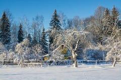 Het landschap van de winter Zonnige dag De winterdaling De heldere kleuren Eenvoudig landschap De winter bos bosweg de winter fil Royalty-vrije Stock Foto's