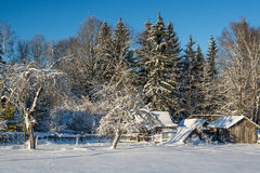 Het landschap van de winter Zonnige dag De winterdaling De heldere kleuren Eenvoudig landschap De winter bos bosweg de winter fil Royalty-vrije Stock Fotografie