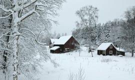 Het landschap van de winter in zuidelijk Zweden Stock Foto's