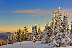 Het landschap van de de winterberg bij de zachte kleuren van het plaatsen van zon royalty-vrije stock fotografie