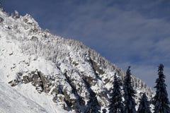 Het landschap van de de winterberg met snow-covered bomen Royalty-vrije Stock Foto's