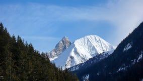Het landschap van de de winterberg van Parc Ela Park in zuidoostelijk Zwitserland op een mooie de winterdag stock foto's