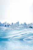 Het landschap van de winterforest winter Royalty-vrije Stock Fotografie
