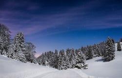 Het landschap van de de winternacht van de bergpijnboom stock afbeelding