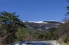 Het landschap van het de winterpanorama van pijnboom en vergankelijk bos met weg in Vitosha berg Stock Foto's