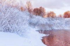 Het Landschap van de de winterrivier stock afbeelding