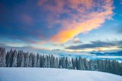 Het landschap van de de wintersneeuw in de bergen van de Karpaten ukraine stock fotografie