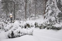 het landschap van de de wintertijd stock foto