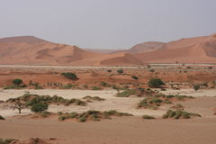 Het Landschap van de woestijn Royalty-vrije Stock Fotografie