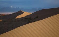 Het Landschap van de woestijn Royalty-vrije Stock Afbeelding