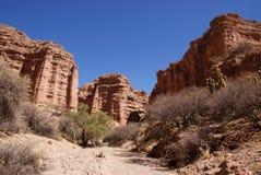 Het landschap van de woestijn dichtbij Tupiza, Bolivië Royalty-vrije Stock Foto