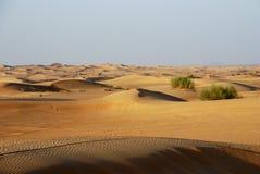 Het landschap van de woestijn in Doubai Royalty-vrije Stock Foto