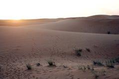 Het landschap van de woestijn in Doubai Stock Afbeelding