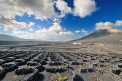 Het landschap van de woestijn, Lanzarote eiland (Spanje) Stock Afbeelding