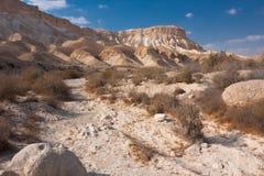 Het landschap van de woestijn, Negev, Israël Stock Afbeelding