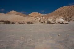 Het landschap van de woestijn, Negev, Israël Stock Foto