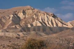 Het landschap van de woestijn, Negev, Israël Royalty-vrije Stock Foto